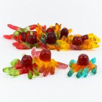 Gummi Octopus